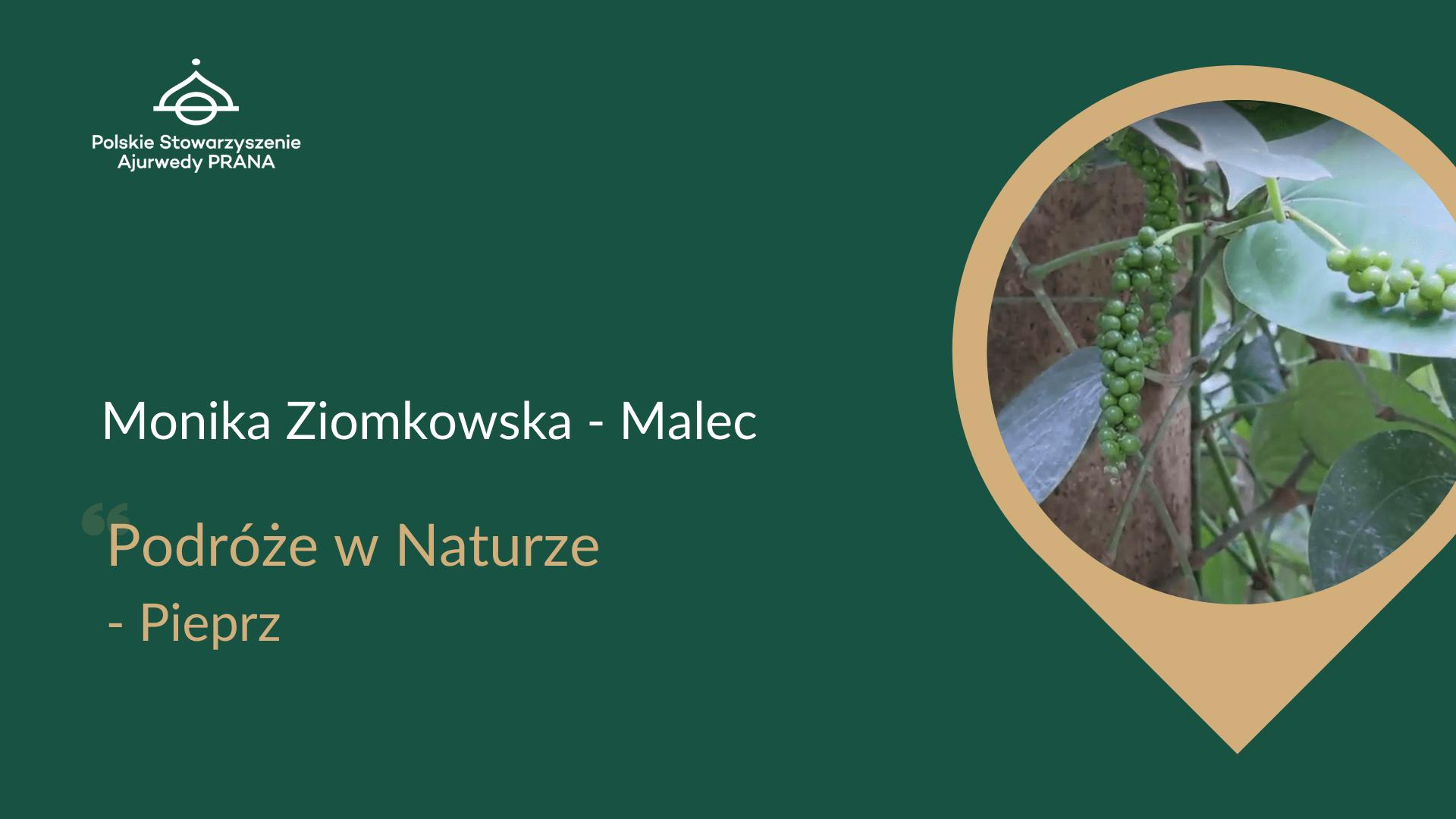 Podróże w Naturze – Pieprz