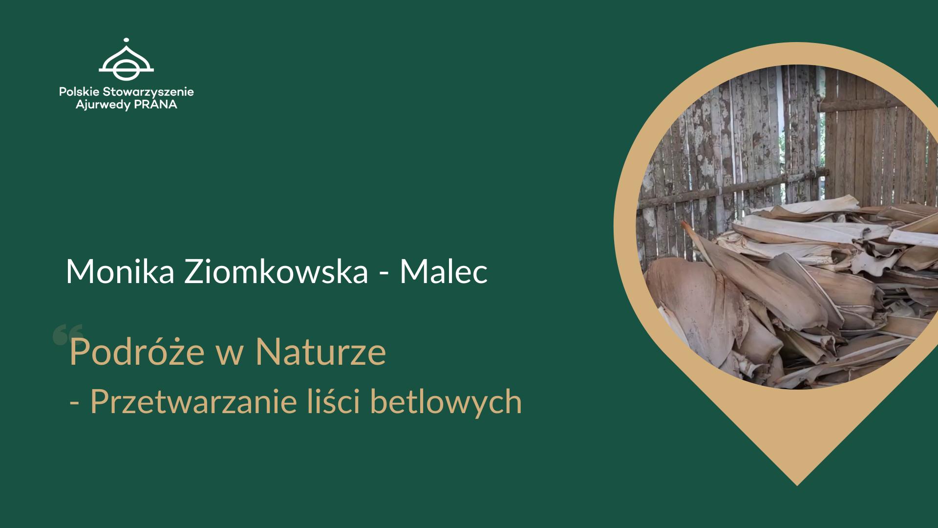 Podróże w Naturze – Przetwarzanie liści betlowych