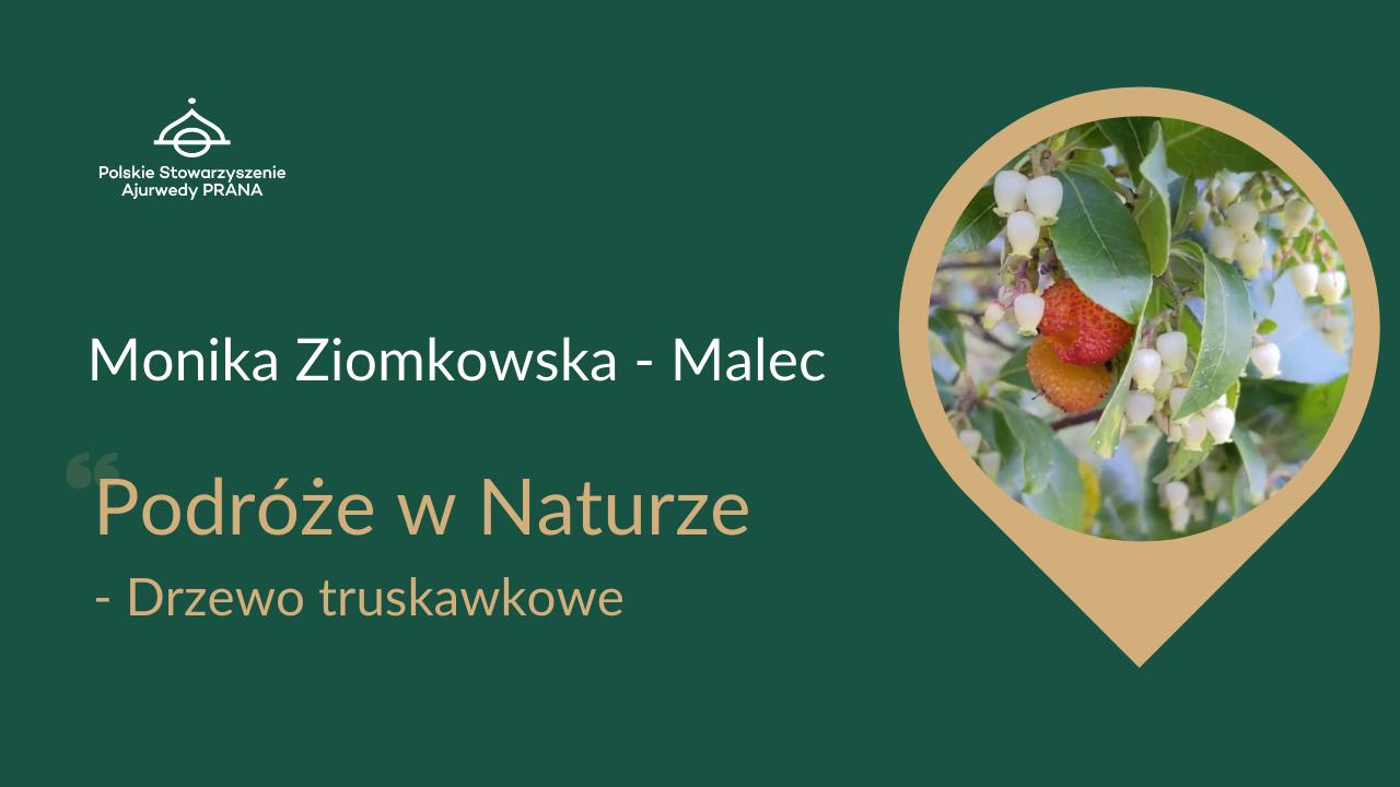 """Podróże w Naturze """"Drzewo truskawkowe"""" – Monika Ziomkowska – Malec"""