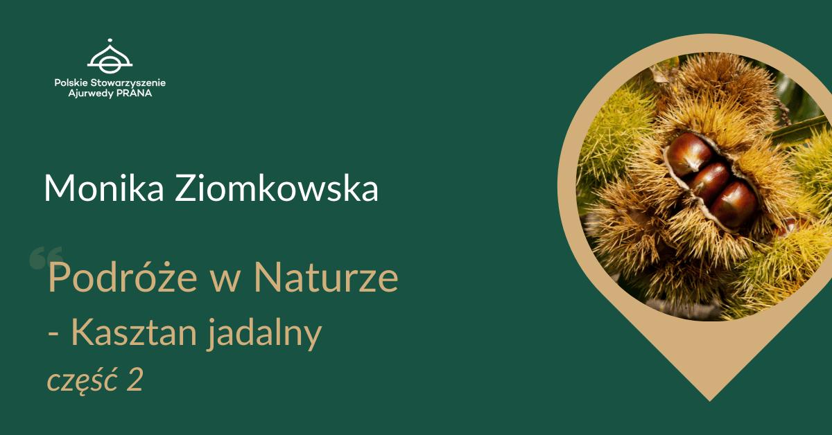 """Podróże w Naturze """"Kasztan Jadalny"""" część 2 – Monika Ziomkowska – Malec"""